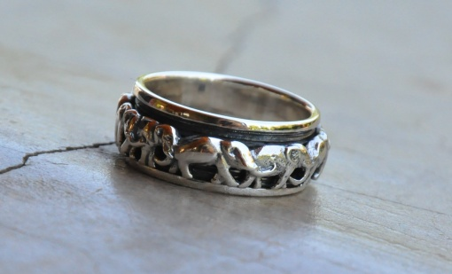 Elephant band ring R420 X 16 WRIS015